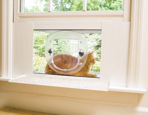 cat outdoor window perch | PetSafe Cat Veranda Terrace Porch Perch Cat Door Window | eBay