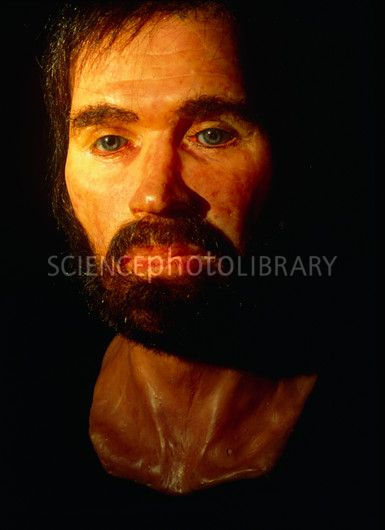 Reconstructed face of the Lindow Man bog body