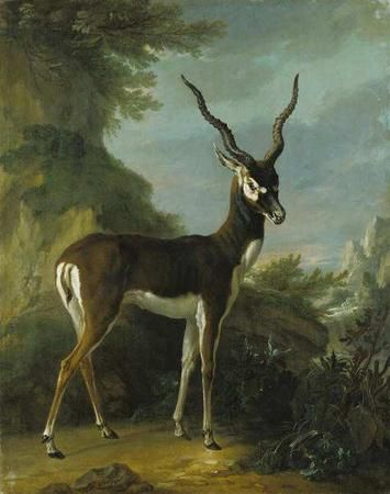 Jean-Baptiste Oudry: just love this style!