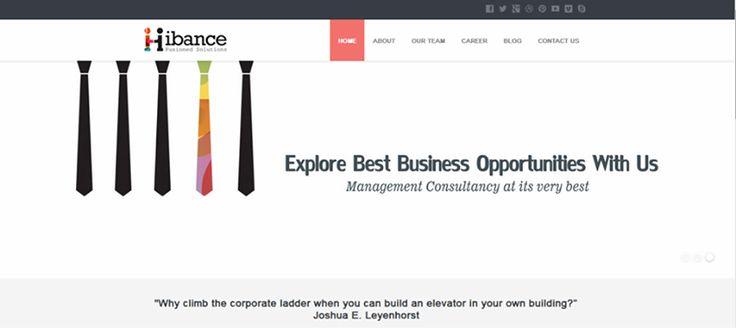 Website Design, Hibance