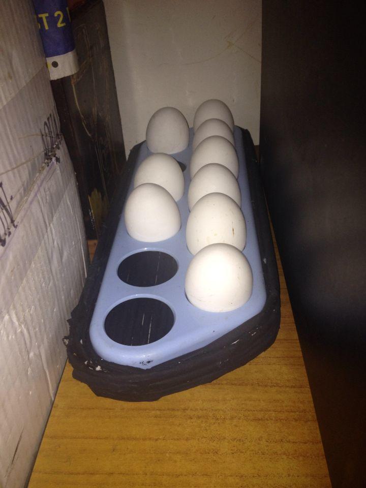 Egg holder tray using newspaper