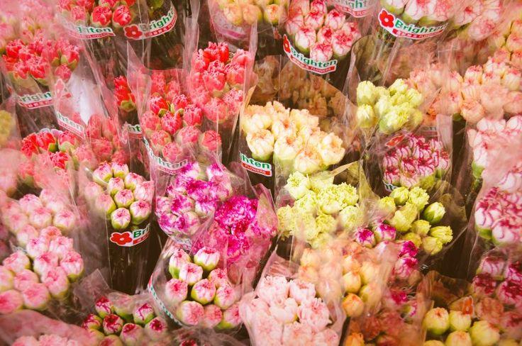 Hong Kong Flower Market Kowloon
