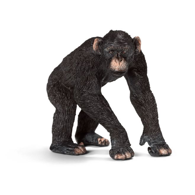___Chimpanzee, male____ Schleich Figurine available at Fantaztic Learning Store Canada - shop.fantazticcatalog.com