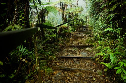 Mount Kinabalu Park in Sabah, Malaysia