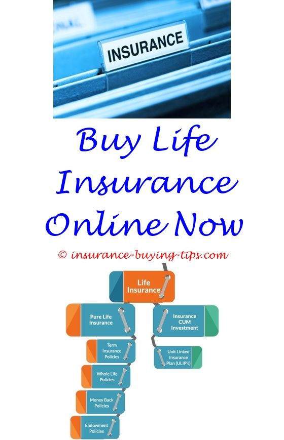 buy kaiser dental insurance - number of people buying travel insurance.can i buy car insurance after an accident buying car insurance after an accident should you buy trip insurance for a cruise 4365259553