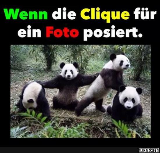 Wenn die Clique für ein Foto posiert..   Lustige Bilder, Sprüche, Witze, echt lustig
