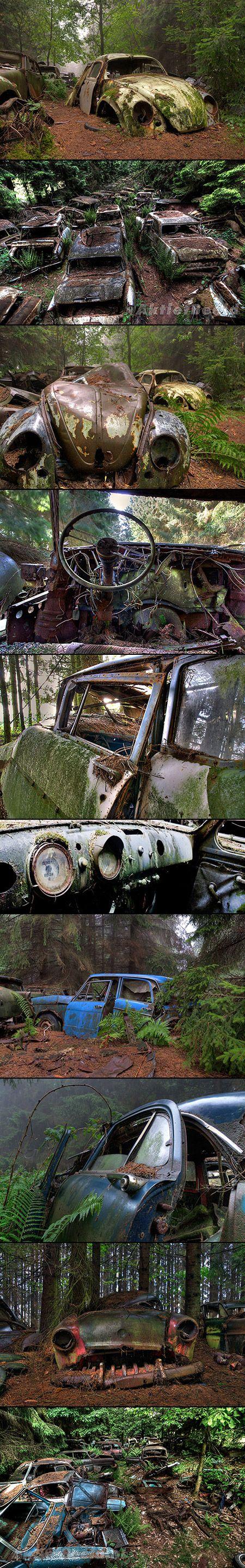Chatillion Car Graveyard, Belgium @49.6081992,5.7136257