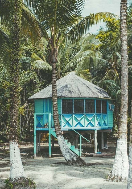beach huts + coconuts