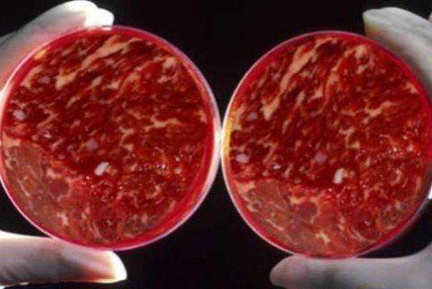 Билл Гейтс и другие инвесторы вложили $108 млн в производство искусственного мяса и сыра