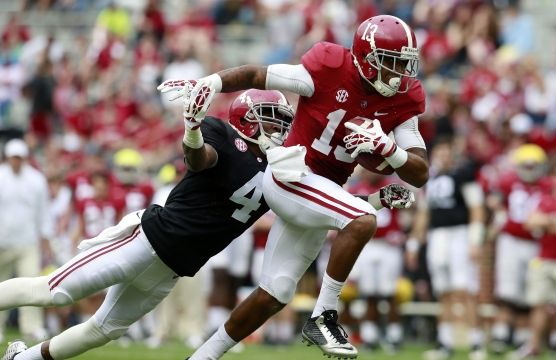 Image result for pictures alabama football