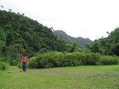 Hiking in Rarotonga