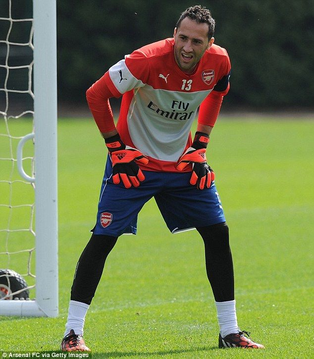 Safe hands: new goalkeeper David Ospina was put through his paces during training...