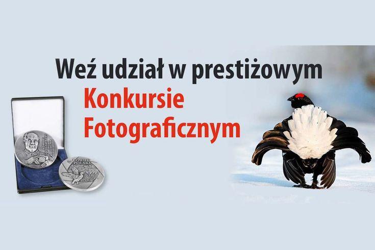 Konkurs Fotograficzny im. Włodzimierza Puchalskiego