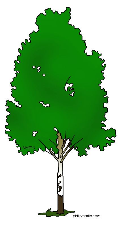17 Best images about CLIP ART TREES FOR ANIMATED POWER POINTS on ...