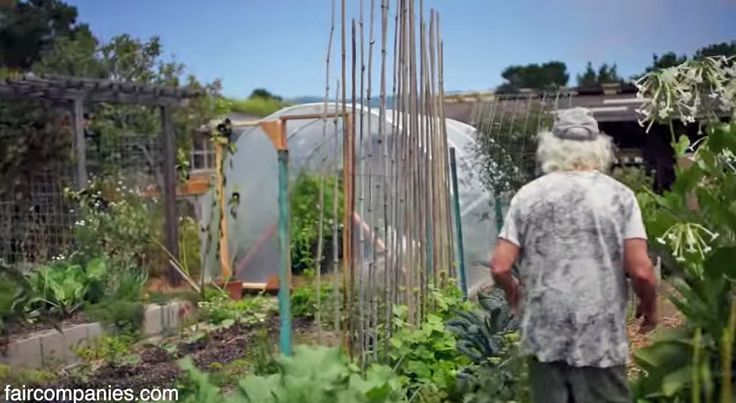 If you're into homesteading and self-reliance you'll find two very valuable lessons in this video, as well as tons of inspiration! In the video you'll get