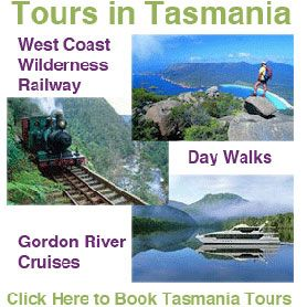 Self Drive: Tasmania sightseeing tours and activities