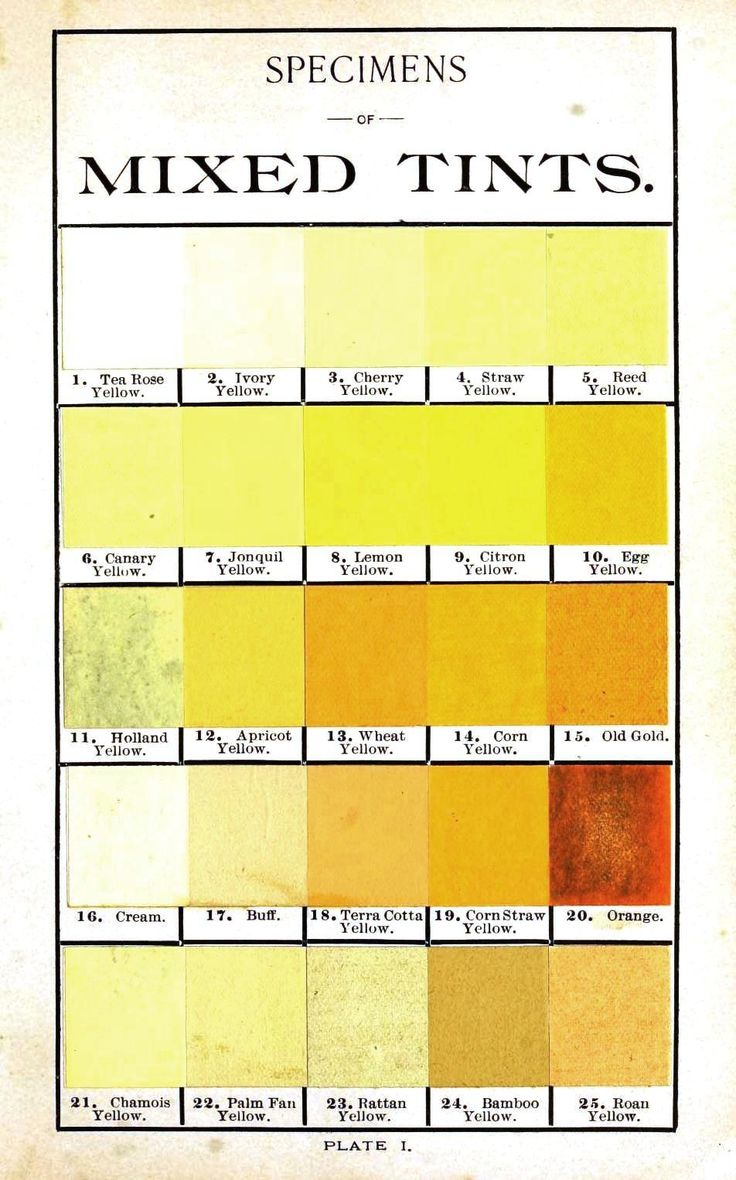 best colors images colors color charts and acirc153yencolor multi color hints on tints yellow