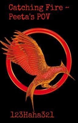 Also Catching Fire ~Peeta's POV (on Wattpad) https://www.wattpad.com/story/4518343 #fanfiction #Fanfiction #amreading #books #wattpad