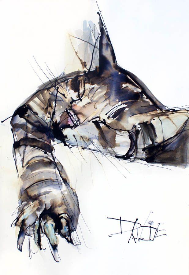 Valerie Davide cat Sweet-dreams