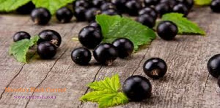 Instead of eating bananas, one can consume black currant juice to help prevent muscle cramps. https://www.emicosta.com/blog/natural-black-currant-juice-and-syrup-specialties-of-micosta/