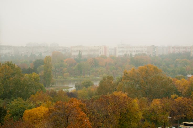Misty autumn in the city by Fabi Nuka on 500px