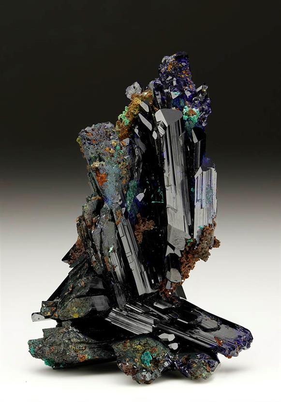 Lustrous deep dark blue Azurite forming a number of parallel growth bladed crystal groups in an overall inter-formed group, from the Tsumeb Mine, Namibia. Crystal Classics Minerals