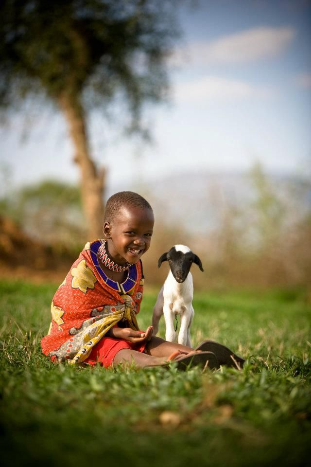 In Kenya, Namanyak, age 6, plays with a lamb, made possible through the World Vision Gift Catalog