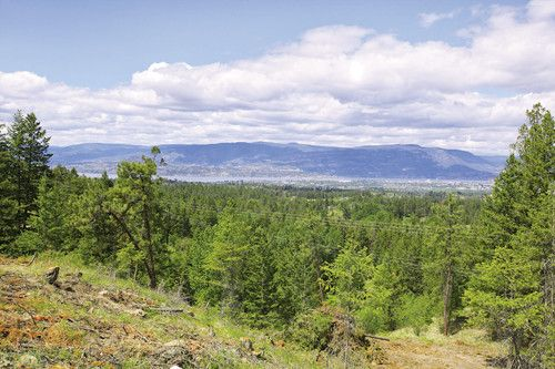 13.2 Acres on June Springs Road Privacy with views can be yours to enjoy on this 13.2 acres in desirable South East Kelowna. Road is through Crown Land and will give access to several beautiful building sites. That, encompassed with selective timber clearing gives way to panoramic views of lake, city and valley. All services such as power, cable, telephone and water are to the lot line. The buyer would need to install a personal septic system. The possibilities are limitless here in these…