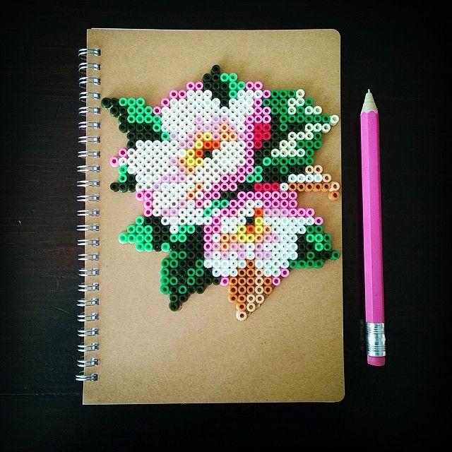 Flowers notebook hama perler beads by tamatek