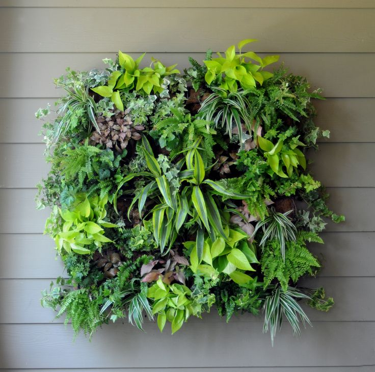 """Pamela Crawford New Living Wall -   14"""" x 14"""" x 5"""" Square - Color: Black  Basket with Coco Liner (9 front holes and 6 side holes). Outer Frame 6.5mm & Inner 4mm. Great for conserving space in small gardens. Add a splash of color to your wall! #living wall planter #space saving garden"""