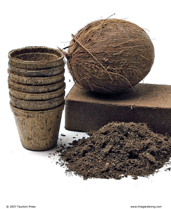 Coconut coir is an excellent bedding material for compost worms when used in conjunction with newspaper and cardboard. This article promotes its use in the garden. It's more neutral pH compared to peat is more appropriate for worms but watch/test the salinity of the coir because it's a product from ocean-side cultivation. Flush it well.
