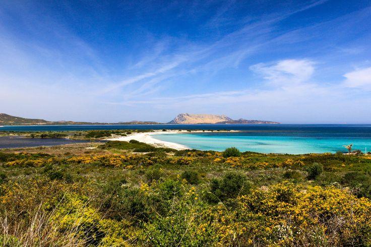 Sardegna - Sardinia -  Spiaggia Isuledda