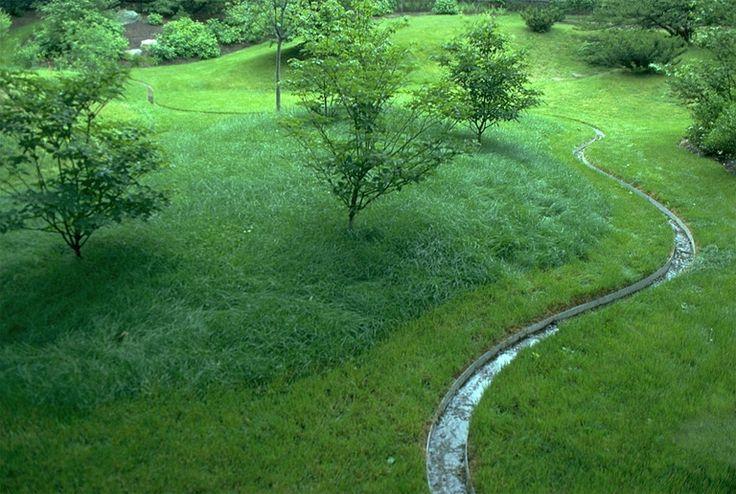 Children's Therapeudic Garden | Reed Hilderbrand | Landform | Water Feature | Runnel | Lawn | Health