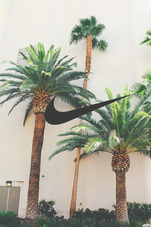 Image de nike, summer, and palm trees