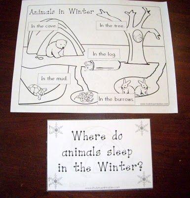 Winter Animals Preschool Theme | Shining Our Lights: Our Winter Preschool Unit