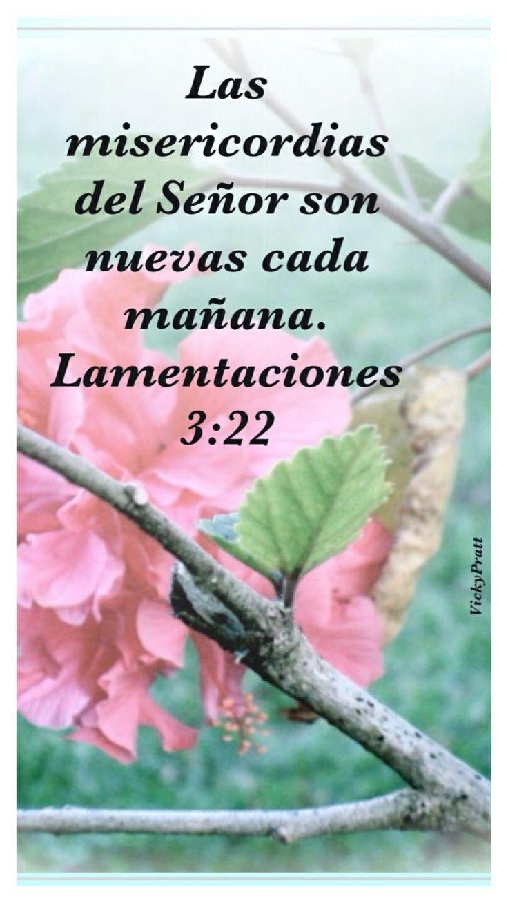 Lamentaciones 3:22-23 Por la misericordia de Jehová no hemos sido consumidos, porque nunca decayeron sus misericordias. Nuevas son cada mañana; grande es tu fidelidad.♔