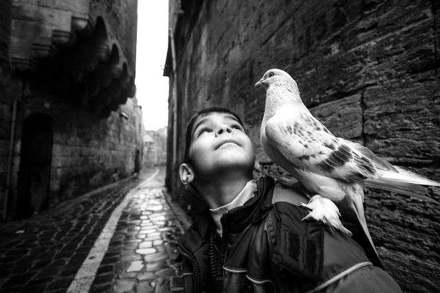 © Ara Güler