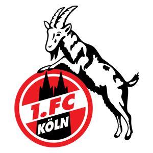 FC COLOGNE - Foot - Allemagne