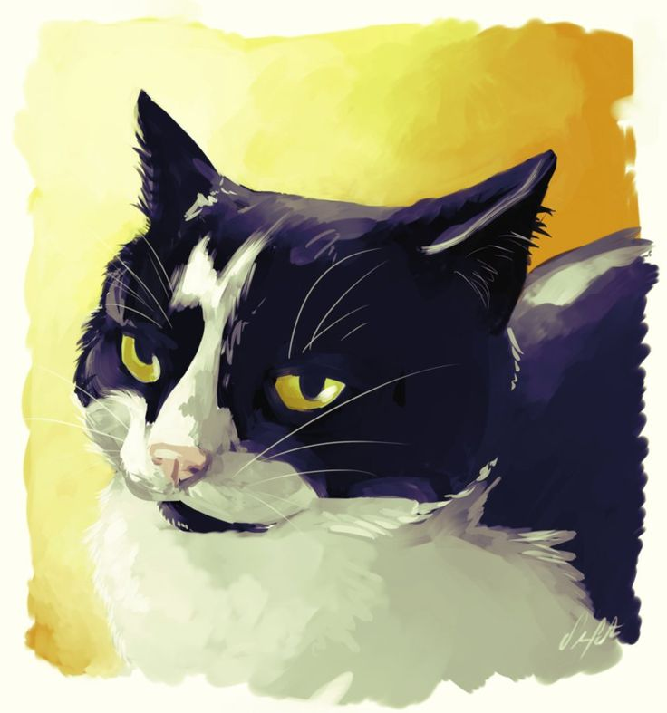 698 best Black and White Cats _Art images on Pinterest ...
