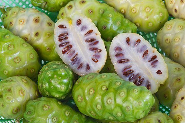 5 olağanüstü meyve-noni