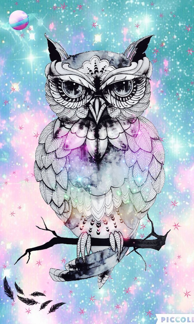 Owl hipster 15 best Galaxy Wallpapersby me