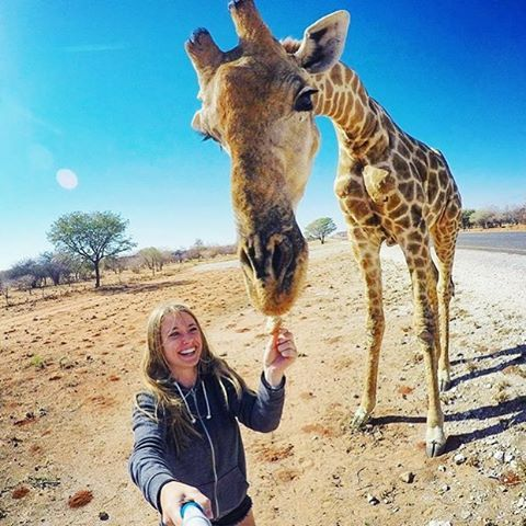 """Kamanjab, Namibia @tuunde """"Shared my lunch with a giraffe today """" - #Backpackerstory #backpacker #travel #destination"""
