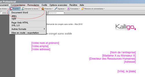 Convertir un texte PDF en texte Word