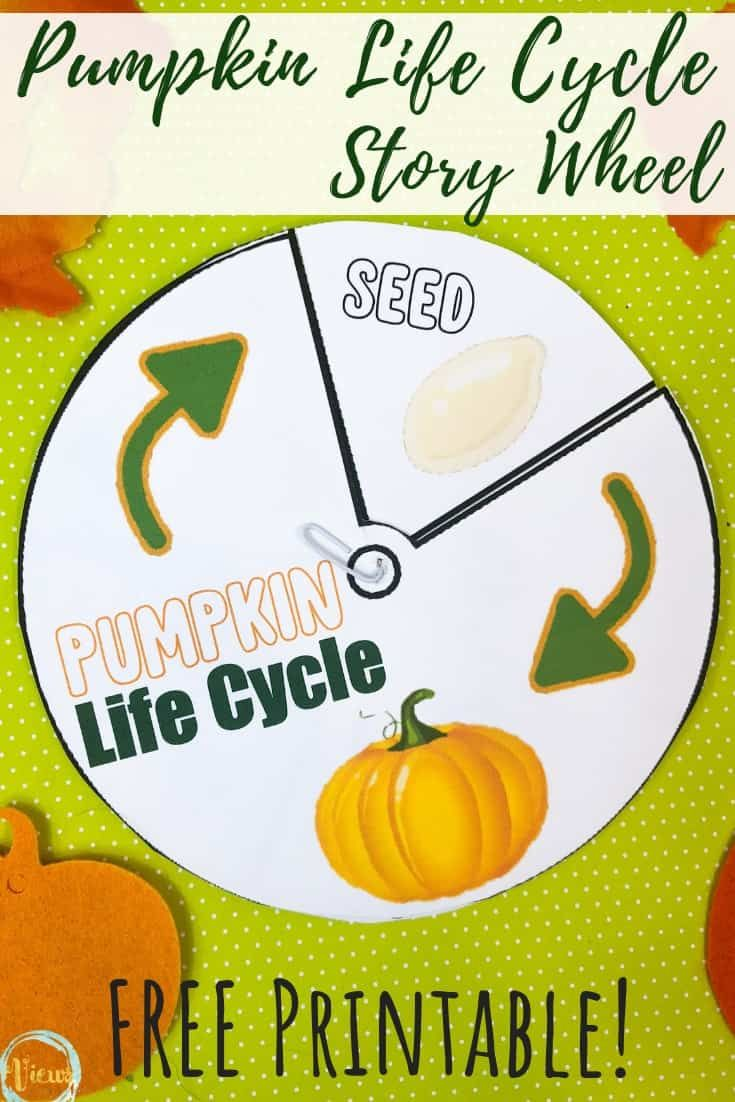 Pumpkin Sensory Bin Picking Counting And Exploring Pumpkin Life Cycle Life Cycles Life Cycles Preschool [ 1102 x 735 Pixel ]