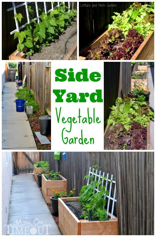 side yard vegetable garden and diy planter boxes at www
