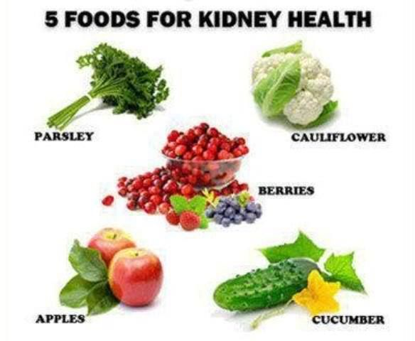 Healthy Kidney Diet
