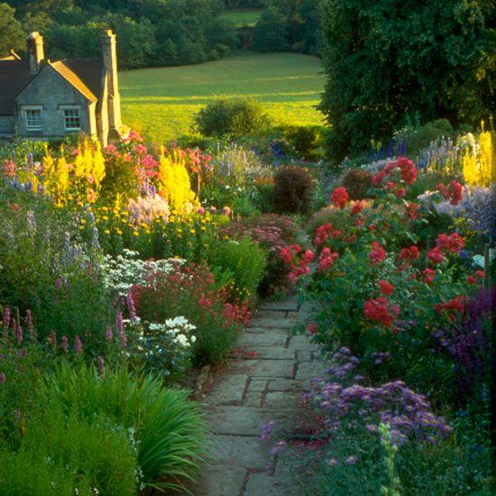 17 Best images about Gardensplantsflowers on Pinterest