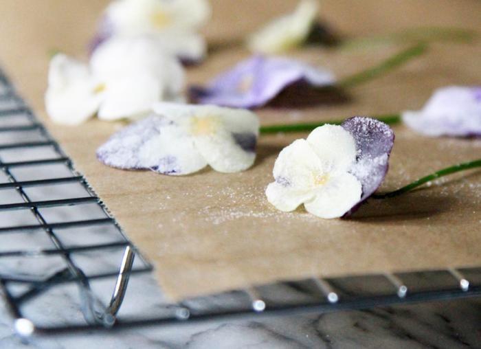 DIY: Easy Sugared Violas