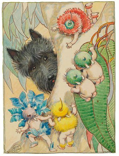 May Gibbs Illustration- British / Australian children's author-illustrator, ca. 1877-1969
