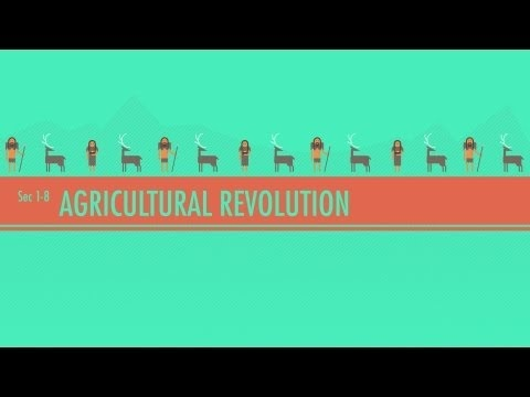 a overview of agricultural revolution This research brief summarizes information about perennial polyculture farming  and discusses its potential for reducing worldwide hunger and malnutrition,.
